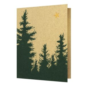 Polaris Greeting Card